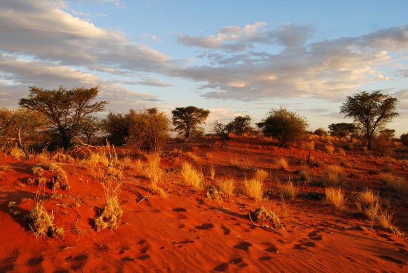 Namibie - Foto:  vince42 (Flickr)